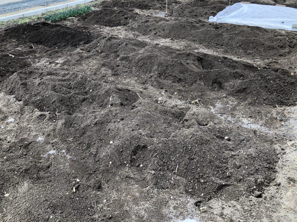 石灰をまいた後の畑