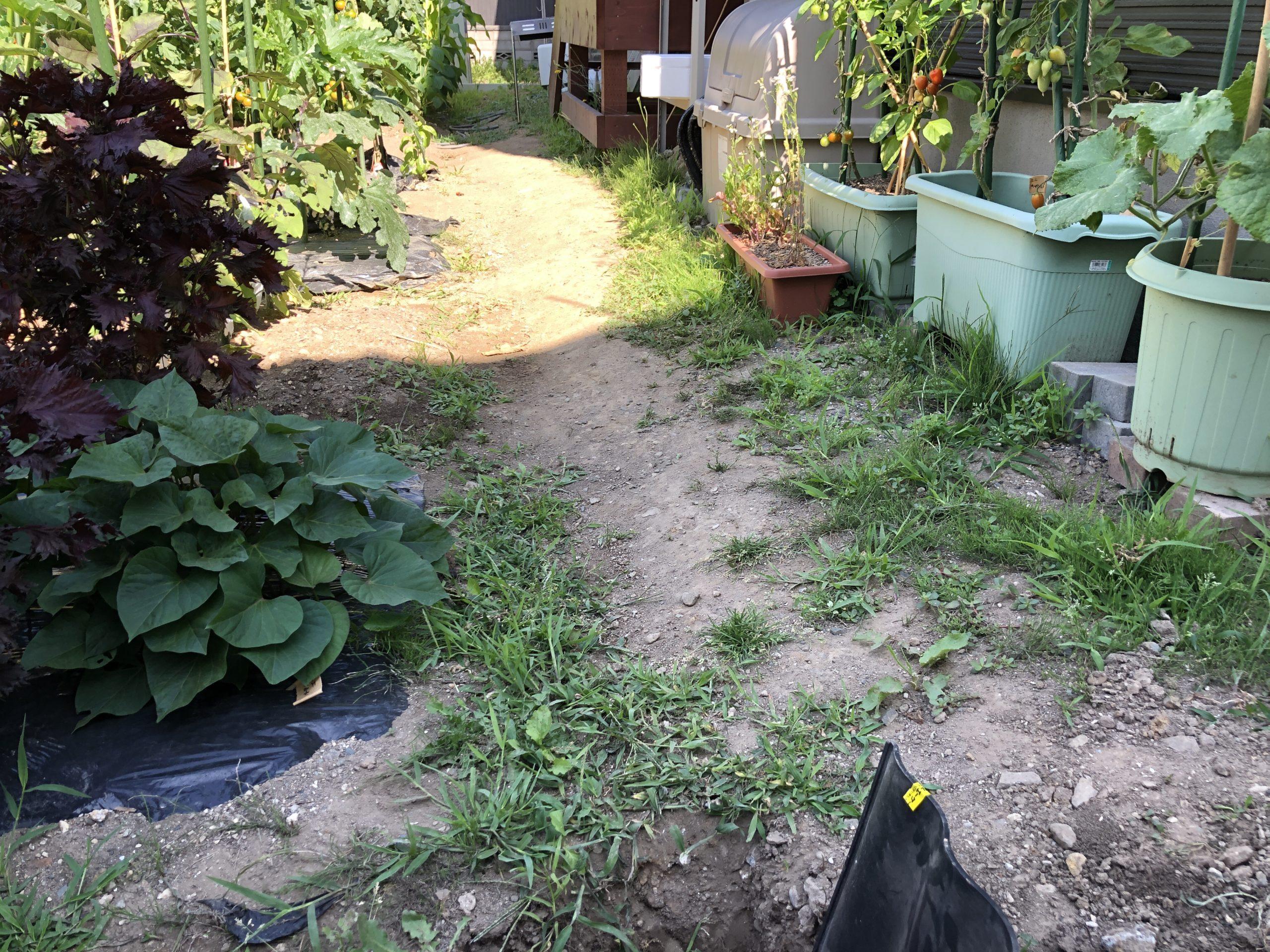 土留めであぜ板を使って家庭菜園をつくる