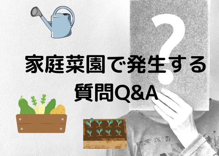 家庭菜園でよくある 質問Q&A