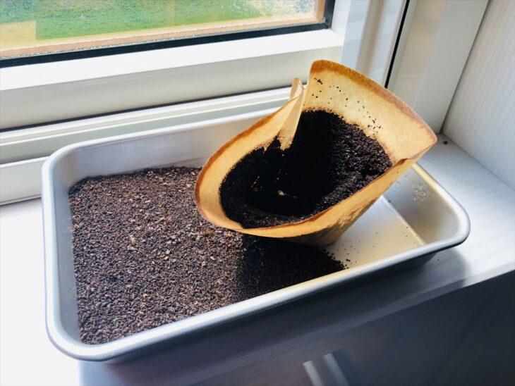 コーヒーかすを乾かす